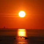 Il sole si specchia sul mare accanto al Grattacielo di Rimini